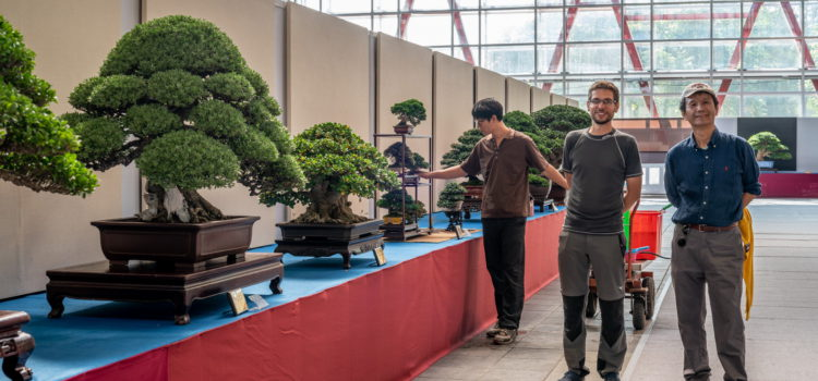 Hwa Fong – Taiwanese bonsai exhibition – part 1